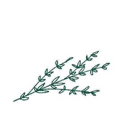 Flowers & Shrubbery